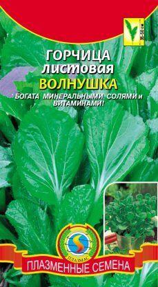 Горчица Волнушка листовая ЦВ/П (ПЛАЗМА) 1гр скороспелый зеленый