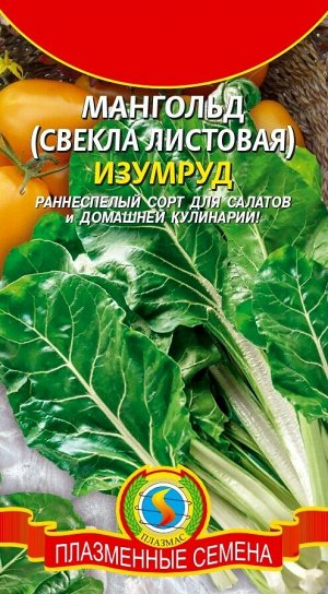 Мангольд Изумруд ЦВ/П (ПЛАЗМА) 2,0гр раннеспелый