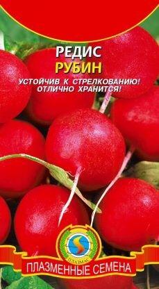 Редис Рубин ЦВ/П (ПЛАЗМА) Раннеспелый круглый