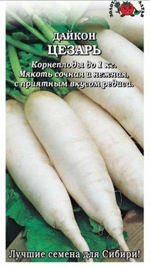 Дайкон Цезарь ЦВ/П (Сотка) среднеспелый