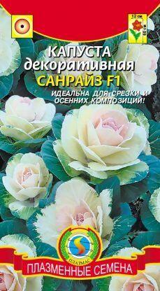 Цветы Капуста декоративная Санрайз ЦВ/П (ПЛАЗМА) однолетнее до 90см