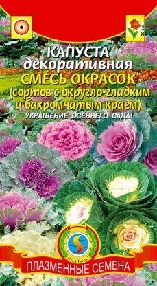 Цветы Капуста декоративная Смесь окрасок ЦВ/П (ПЛАЗМА) однолетнее 30см