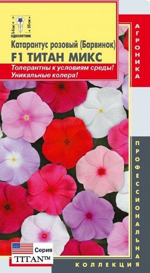 Цветы Катарантус Розовый (Барвинок) F1 Титан Микс ЦВ/П (ПЛАЗМА) однолетнее 35см