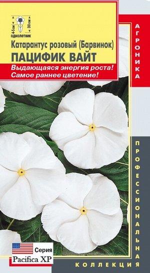 Цветы Катарантус Розовый (Барвинок) Пацифик Вайт ЦВ/П (ПЛАЗМА) однолетнее 30см