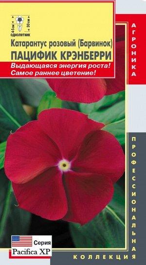 Цветы Катарантус Розовый (Барвинок) Пацифик Крэнберри ЦВ/П (ПЛАЗМА) однолетнее 30см