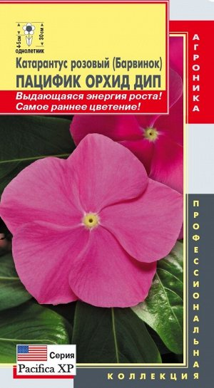 Цветы Катарантус Розовый (Барвинок) Пацифик Орхид Дип ЦВ/П (ПЛАЗМА) однолетнее 30см