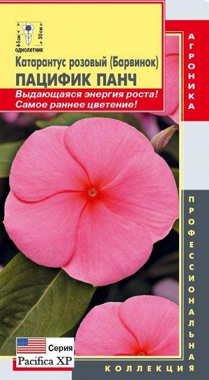 Цветы Катарантус Розовый (Барвинок) Пацифик Панч ЦВ/П (ПЛАЗМА) однолетнее 30см