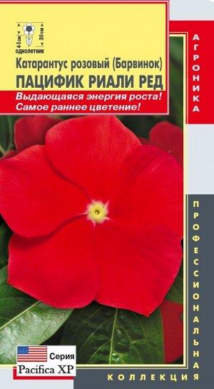 Цветы Катарантус Розовый (Барвинок) Пацифик Риали Ред ЦВ/П (ПЛАЗМА) однолетнее 30см