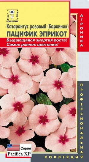 Цветы Катарантус Розовый (Барвинок) Пацифик Эприкот ЦВ/П (ПЛАЗМА) однолетнее 30см