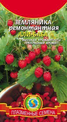 Земляника Али Баба ЦВ/П (ПРЛАЗМА) 0,04гр ремонтантная безусая