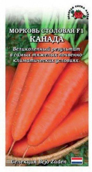 Морковь Канада F1 ЦВ/П (Сотка) среднепоздний