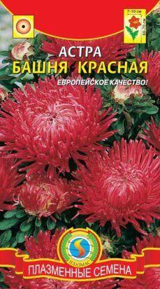 Цветы Астра Башня Красная ЦВ/П (ПЛАЗМА) пионовидная до 70см