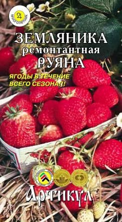 Земляника Руяна ЦВ/П (АРТИКУЛ) ремонтантная