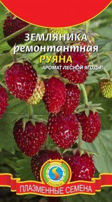 Земляника Руяна ЦВ/П (ПЛАЗМА) 0,04гр ремонтантная