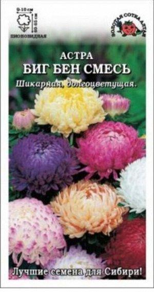 Цветы Астра Биг Бен Смесь ЦВ/П (Сотка) густомахровая до 65см