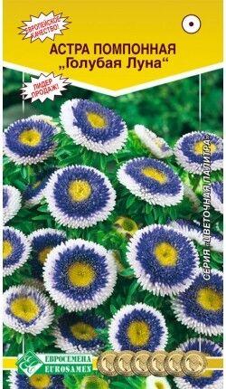 Цветы Астра Голубая луна помпонная ЦВ/П (ЕС) помпонная до 50см