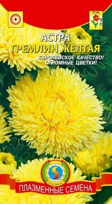 Цветы Астра Гремлин Жёлтая ЦВ/П (ПЛАЗМА) коготковая до 75см