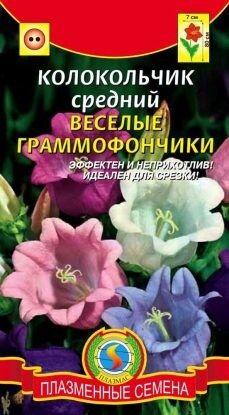 Цветы Колокольчик Веселые граммофончики ЦВ/П (ПЛАЗМА) двулетнее до 70см