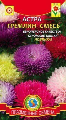 Цветы Астра Гремлин Смесь ЦВ/П (ПЛАЗМА) коготковая до 75см