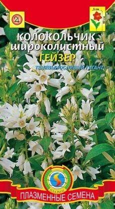 Цветы Колокольчик Гейзер ЦВ/П (ПЛАЗМА) белый широколистный многолетнее 90см