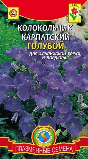 Цветы Колокольчик Голубой карпатский ЦВ/П (ПЛАЗМА) многолетнее 25см