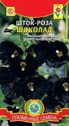 Цветы Шток-роза (Мальва) Шоколад ЦВ/П (ПЛАЗМА)(круп,чёрные, выс. до 180см)