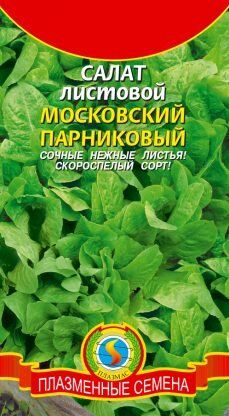 Салат Московский парниковый ЦВ/П (ПЛАЗМА) ранний, листовой