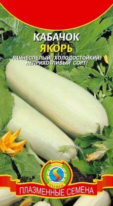 Кабачок Якорь ЦВ/П (ПЛАЗМА) раннеспелый