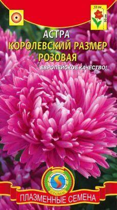 Цветы Астра Королевский размер Розовая ЦВ/П (ПЛАЗМА) 0,1гр пионовидная до 1м
