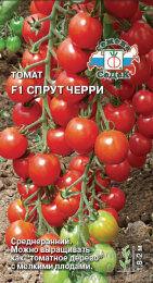 Томат Спрут ЧЕРРИ F1 ЦВ/П (СЕДЕК) раннеспелый 2,0-2,2м