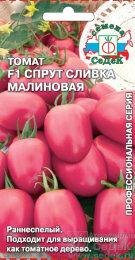 Томат Спрут Черри Малиновый F1 ЦВ/П (СЕДЕК) раннеспелый 2,0-2,2м