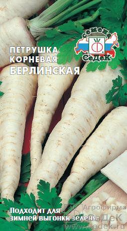 Петрушка корневая Берлинская ЦВ/П (СЕДЕК)