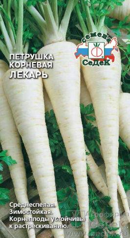 Петрушка корневая Лекарь ЦВ/П (СЕДЕК)