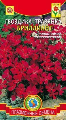 Цветы Гвоздика травянка Бриллиант ЦВ/П (ПЛАЗМА) многолетнее 20-25см