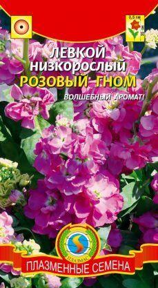 Цветы Левкой Розовый гном ЦВ/П (ПЛАЗМА) однолетнее 35см