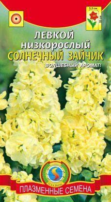 Цветы Левкой Солнечный зайчик ЦВ/П (ПЛАЗМА) однолетнее 35см