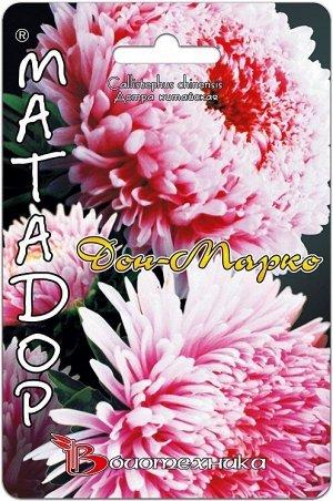 Цветы Астра Матадор Дон Марко ЦВ/П (БИО) пионовидная+принцесса до 1м