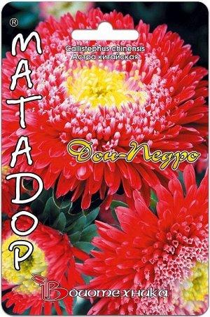 Цветы Астра Матадор Дон Педро ЦВ/П (БИО) пионовидная+принцесса до 1м