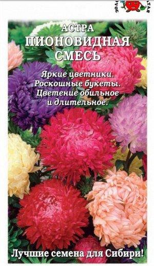 Цветы Астра Пионовидная Смесь ЦВ/П (Сотка) 60-65см