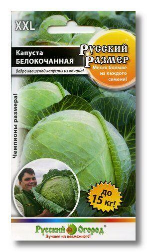 Капуста б/к Русский Размер ЦВ/П (НК) 50шт среднепоздняя