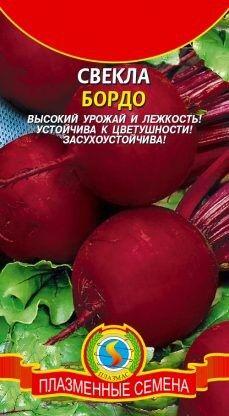 Свекла Бордо Односемянная ЦВ/П (ПЛАЗМА) среднеранний