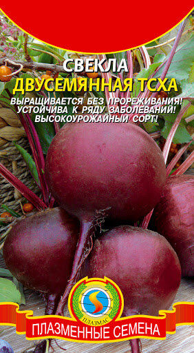 Свекла Двусемянная ТСХА ЦВ/П (ПЛАЗМА)