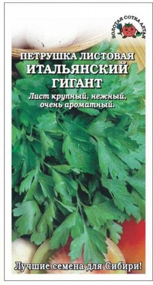 Петрушка листовая Итальянский гигант ЦВ/П (Сотка)