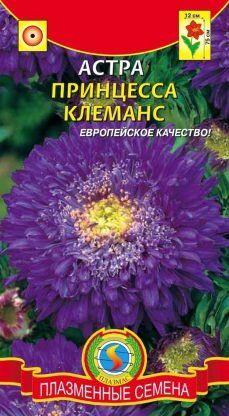 Цветы Астра Принцесса Клеманс ЦВ/П (ПЛАЗМА) фиолетовая густомахровая 50-70см