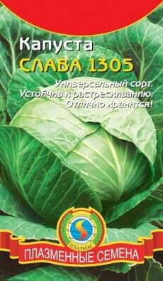 Капуста б/к Слава 1305 ЦВ/П (ПЛАЗМА) 0,5гр среднеспелый