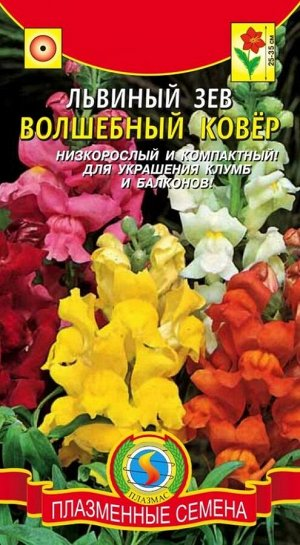 Цветы Львиный Зев Волшебный ковёр ЦВ/П (ПЛАЗМА) однолетнее 25-35см