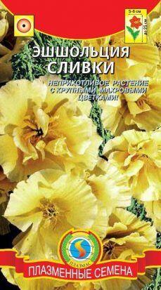 Цветы Эшшольция Сливки ЦВ/П (ПЛАЗМА)