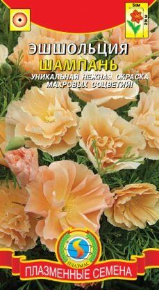 Цветы Эшшольция Шампань ЦВ/П (ПЛАЗМА)