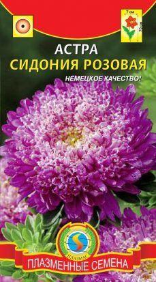 Цветы Астра Сидония Розовая ЦВ/П (ПЛАЗМА) принцесса 60-70см