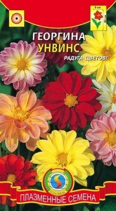Цветы Георгина Унвинс Смесь ЦВ/П (ПЛАЗМА) однолетнее 60см